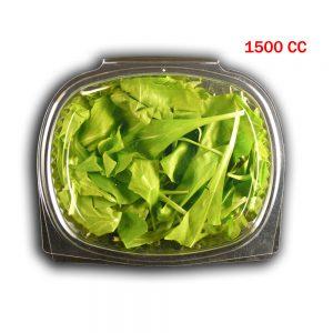 Vaschette OPS ovale c/c 5