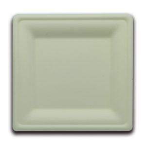 Bio servito piatto quadrato 20X20X1