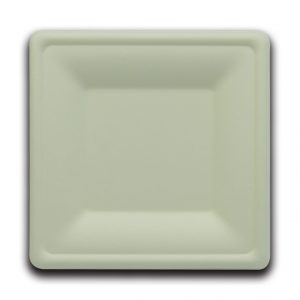 Bio servito piatto quadrato 16X16X1